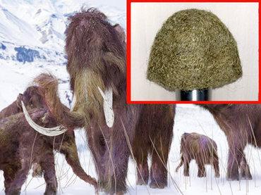 絶滅した「マンモスの毛」で作った111万円のニット帽が衝撃的に素朴!製作者「チクチクしてマッサージ効果もある」=ロシア