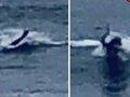 【衝撃動画】米ビーチで謎すぎる「人間モンスター」が撮影される! 人魚か、人間型UMAか…サーファーも驚愕