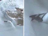 グーグルアースで南極の雪の下から「謎の戦闘機」が露出していることが発覚! 狂った殺人未遂や四角い氷も… 南極が今ヤバい!