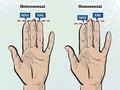 【衝撃】薬指が人差し指よりも長い人ほど同性愛者の傾向! 原因は子宮内で浴びる男性ホルモン量か!?(最新研究)