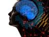 """「死後も意識は生き続ける」「精神の量子場が存在する」超有名学者3人が""""バイオセントリズム論""""を提唱、死後の世界が判明!"""