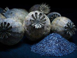 【驚愕】古代人はどこにドラッグを隠していた? 3000年前の古代麻薬貿易の証拠から判明!