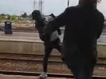 【閲覧注意】レイシストが黒人少年を線路に突き落とした決定的瞬間! しかし予想外の展開に… 人種差別するとこうなる=ベルギー