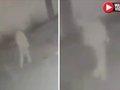 【衝撃映像】監視カメラに謎の人影がハッキリ映り込む! 地縛霊か、透明人間か、タイムトラベラーか…=メキシコ