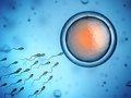 【速報】肩に塗るだけで精子が死滅する「塗るコンドーム」遂に爆誕! 米政府機関が臨床試験、避妊の新時代到来!