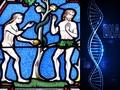 全人類はたった一組の両親(アダムとイブ)の子孫だった!? 「20万年前に90%の生物が同時出現」研究報道に衝撃広がる