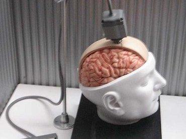 あと5年で爆発的に広まる「ブレインテック」3つを科学ライターが分析! 被るだけでダイエット、幽体離脱、脳の処理速度向上も!