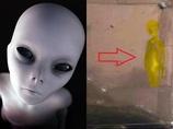 """【緊急】NASA火星探査機「インサイト」が""""謎の人影""""を早速激写! 宇宙人か、人間か…全世界騒然!"""
