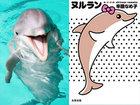「高次元のイルカのスピリット」が大量に地球に来ていることが判明! 衝撃の公開チャネリング…辛酸なめ子小説『ヌルラン』イベント