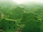「緑に飲み込まれた村」 ― 中国・枸杞(クコ)島の「後頭湾村」が神秘的すぎる!! まるでおとぎ話のような秘境!