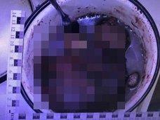 【超閲覧注意】女を惨殺、バラバラにして喰いまくる「食人コンビ」登場! 骨付き腿肉、肝臓とイモ煮込み… ロシアで人肉事件頻発中!