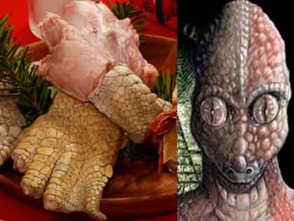 【緊急】トカナが超希少「レプティリアンの肉」販売開始!? 食べると獰猛になり、舌が伸び、目の色変わり、天才になる!?