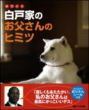 0108sbsbinu_main.jpg