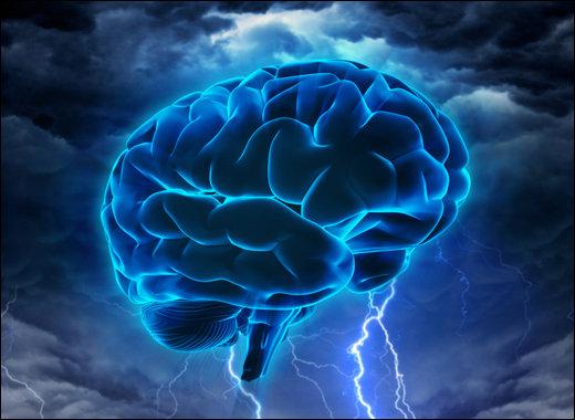 頭部移植をしたら別人が生まれる!? 前世記憶からゲーム脳まで科学ライター2人が脳科学に迫る!の画像1