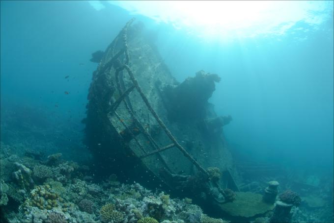 戦艦武蔵が発見される!夢とロマンがいっぱい「世界の沈没船から見つかった宝物ベスト5」の画像1