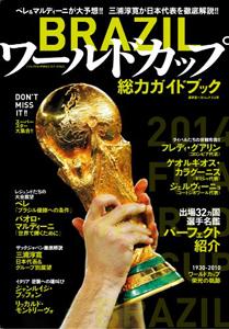 0620worldcup_fla.jpg