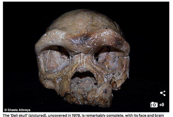 人類の起源は東アジアか? 中国で発見された26万年前の頭蓋骨「ダーリー・スカル」がアフリカ誕生説を覆す可能性の画像1
