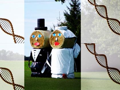 友人は自分と似たDNA構造をしていることが判明 ― 人類の進化と出会いの謎に迫る!の画像1