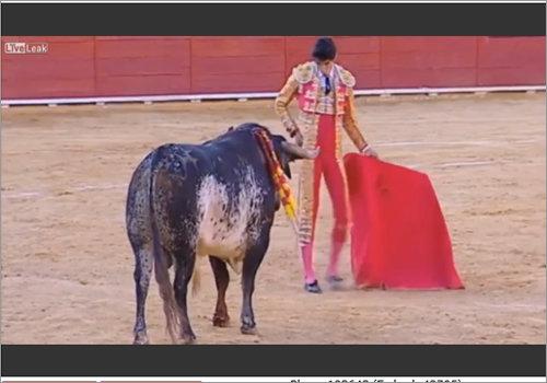 1607_bullfighter_1.jpg