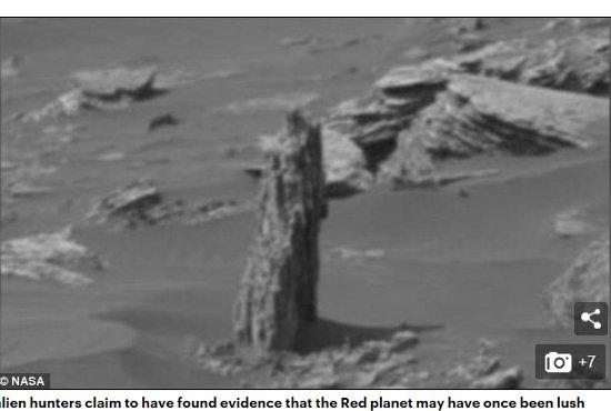 火星で1本の朽木が発見される? NASAの公式画像で判明、かつて緑に覆われていた決定的証拠か?の画像1