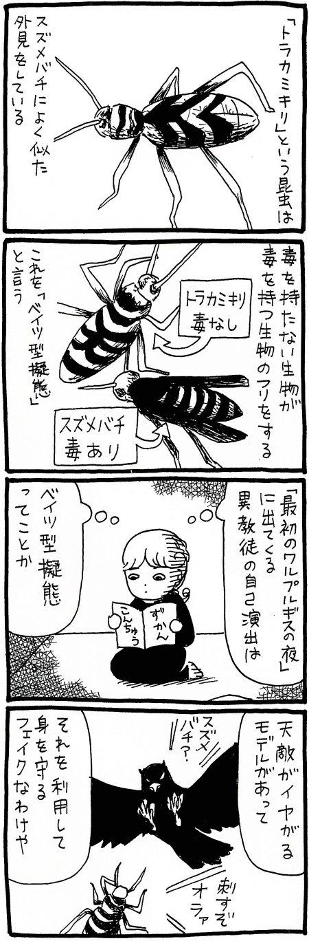 180614_kimaru01.jpg