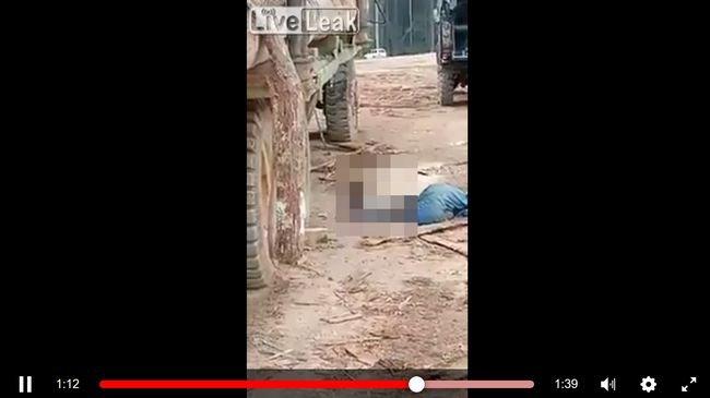 【閲覧注意】巨大な丸太の下敷きになった作業員の一部がペラペラに…! 圧し潰された部分がクッキリぺしゃんこ…!の画像1