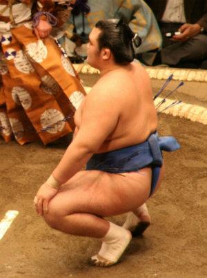 800px-Kotoshogiku_May07.jpg