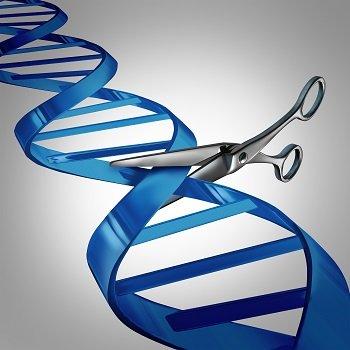 CRISPR_4.jpg