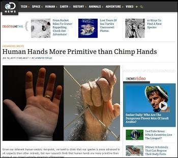 ChimpHands_2.jpg