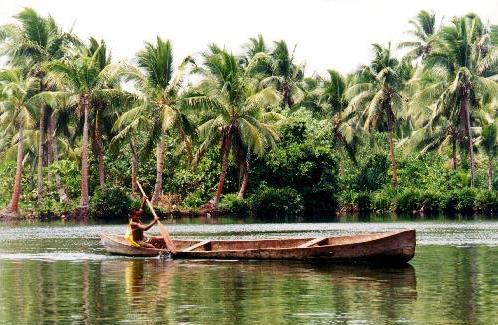 Dugout_canoe_Rennell.jpg