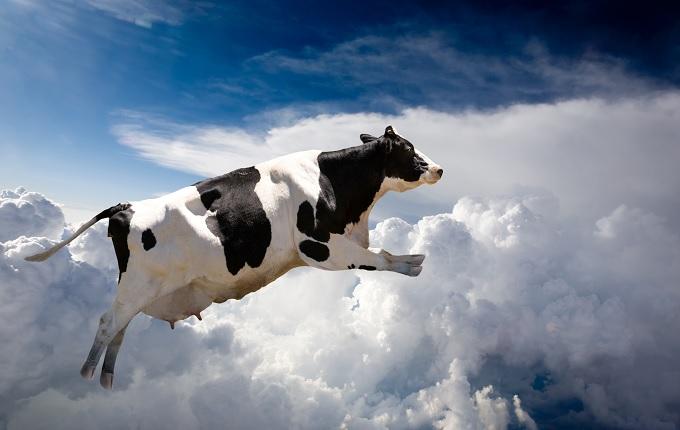 【緊急考察】大地震の前兆か!? 続出する動物の異常行動の画像1