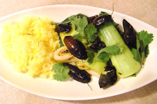昆虫料理はイライラに効果的!?「ゴキブリの香り炒め、サフランライス添え」レシピ!!の画像1