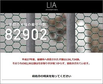 LIA_01.jpg