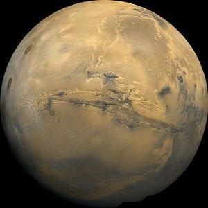 「火星には生物が100%存在する!」NASAが原始生物(ワーム)の写真撮影に成功か?の画像1