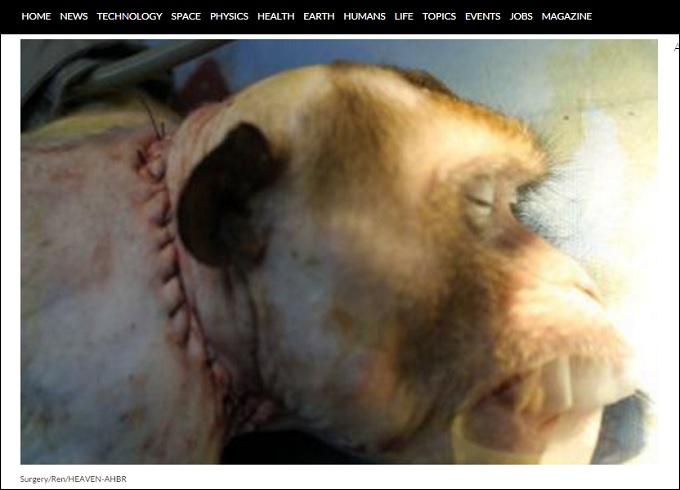 MonkeyHeadTransplant.jpg