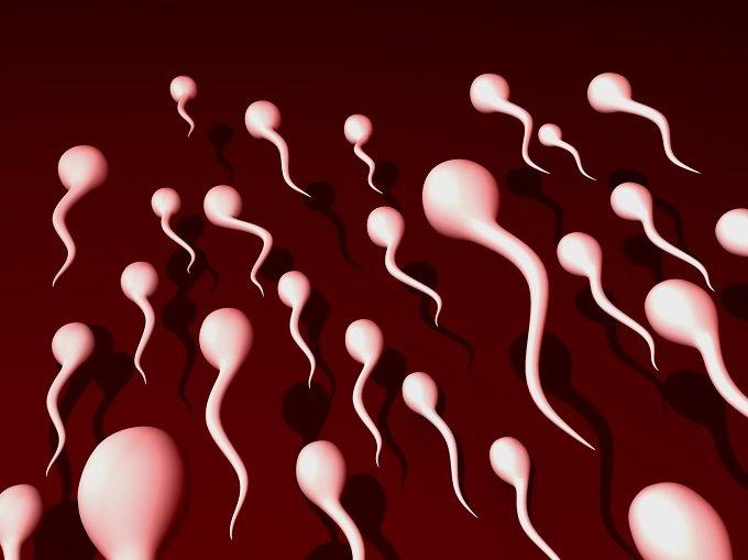 やはり精子は美肌効果バツグン?調味料にも? 学校では教えてくれない精子の秘密5選の画像1