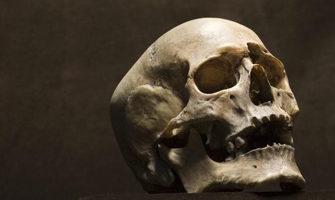 死に至る過程で脳は何を感じているのか ― 化学的に分析したプロセスの結果の画像1