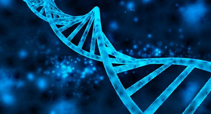 【驚異の遺伝子学】世界初!死んだ胎児が父親に!! 謎の他者細胞「マイクロキメリズム」の怪の画像1