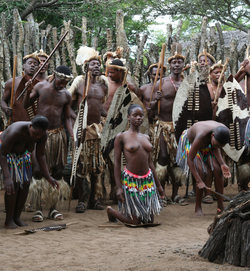 Zulu_dance_(cropped).PNG