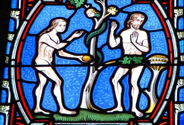 全人類はたった一組の両親(アダムとイブ)の子孫だった!? 「20万年前に90%の生物が同時出現」研究報道に衝撃広がるの画像1
