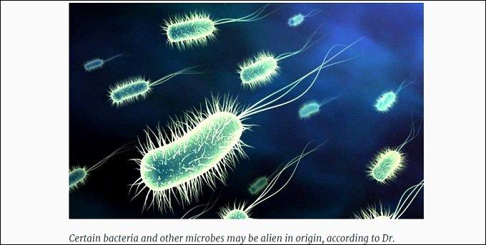 alienbacteria_01.jpg