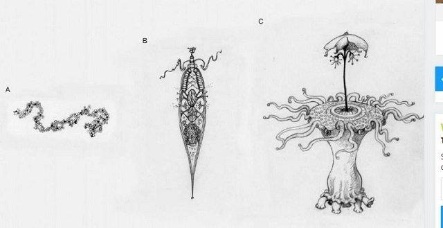 alienmicroorganisms3.JPG