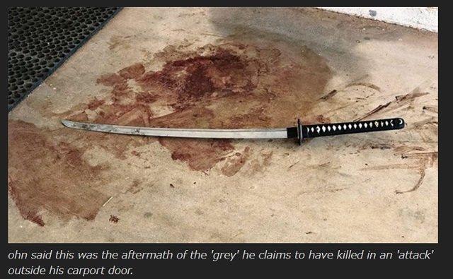 「19体の宇宙人を日本刀で切り殺した」アリゾナの牧場主がエイリアンの連続襲撃に疲れ、5億円の土地を売却! 生々しい傷跡と血痕も公開!の画像3