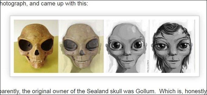 alienskull_02.jpg