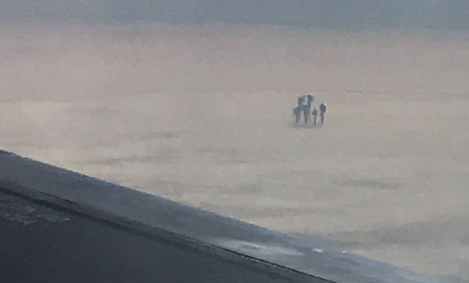 【ガチ】雲の上で「天使の6人家族」がクッキリ激撮される! 上空1万mでピクニックか、専門家「UFOの触手かも」の画像2