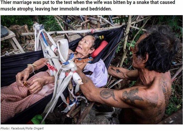 毒ヘビに噛まれた「寝たきりお婆ちゃん」を介抱するお爺ちゃん! 「身も心も妻に捧げる」極貧夫婦の老老介護に涙!の画像1