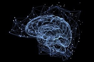 brain-trading_09.jpg