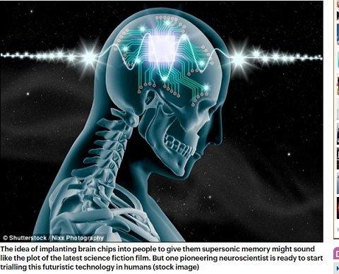 brainchip2.JPG