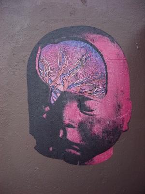 brainsystem0113.jpg