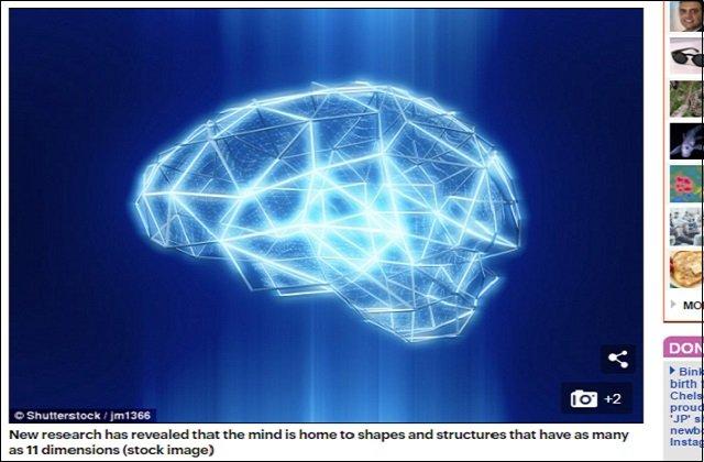 【ガチ】脳は11次元構造を持つ多元宇宙だった! 高次元ニューロンの動きに科学者「誰も想像していなかった世界」 の画像1